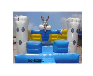 Amusement Park Bouncy Castle (NC-API025) pictures & photos