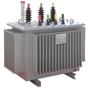Three-Phase Oil Immersed Transformer pictures & photos