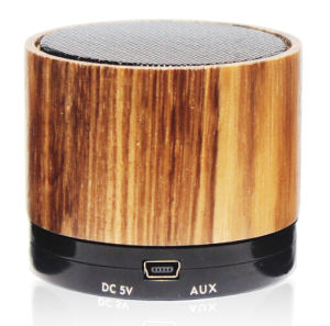 2016 Ept Wood Bluetooth Speaker with Free Sample pictures & photos