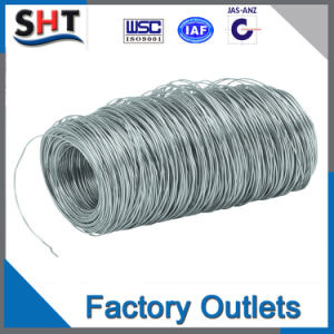 China Factory Sale Soft 316 Stainless Steel Wire pictures & photos