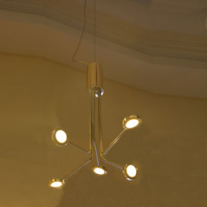 5 Lights Modern LED Pendant Hanging Light in Nickel Color pictures & photos