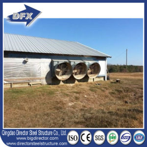 Insulated Low Price Nice Quality Chicken Poultry House pictures & photos
