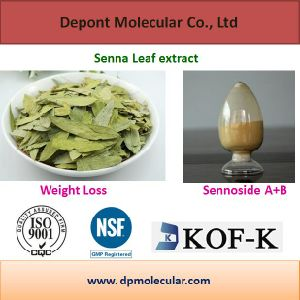 Pure Plant Extract Natural Senna Leaf Extract, Sennosides pictures & photos