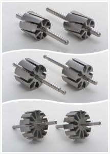 Top Quality Micro Motor Parts Rotor 23mmx3p pictures & photos