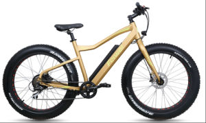 Fat Tyre Electric Bike with Rear Motor (TDE10Z-2) pictures & photos
