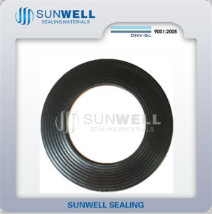 Corrugated with 316L Graphite Gasket Cmg (SUNWELL) pictures & photos
