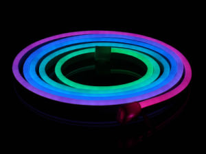 DC24V RGB Chasing LED Neon Flex Light DMX Controlled pictures & photos