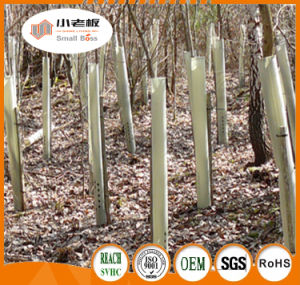 Plant Tree Guards/Outdoor Tree Protectors pictures & photos