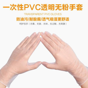 Disposable Powder Free PVC Vinyl Gloves for Cleanroom Use pictures & photos