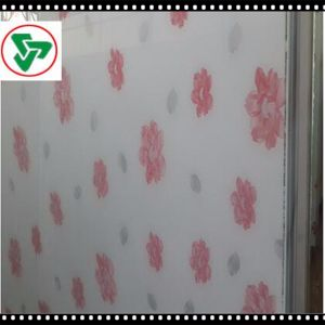 4/5/6mm Toughened /Tempered Silkscreen Tempered Glass for Decorate pictures & photos