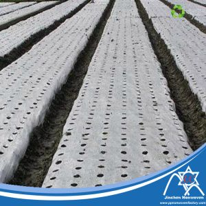 PP Nonwoven Fabric for Agriculture Mulch pictures & photos