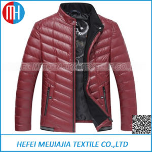 Jacket Men Goose Feather Down Winter Coat pictures & photos