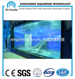 Acrylic Material Acrylic Glass Sheet Aquarium pictures & photos