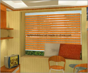 High Quality Blinds Roller Zebra Blinds (SGD-R-3019) pictures & photos