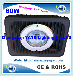 Yaye 18 Hot Sell 80W/100W COB LED Floodlight / 100W LED Tunnel Light with Warranty 2/3/5 Years pictures & photos