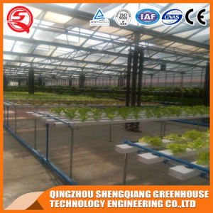 Agriculture Hydroponics Vegetable Plastic Film Green House pictures & photos