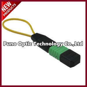 24 Cores Om3 Multimode Fiber Optic MTP Cxp/Cfp Loopback Aqua pictures & photos