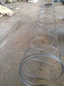 Razor Barbed Wire Good Quality Best Price Factory Dirrect Supply pictures & photos
