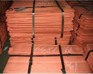 Cathode 99.99% Copper Cathode Pure Grade Copper pictures & photos