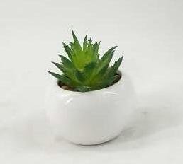 Customized Promotion Potted Plants Mini Succulent Artificial Various Colors Succulent pictures & photos