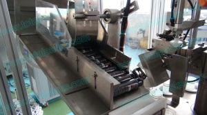 Lotion Filling Sealing Machine (TFS-100A) pictures & photos