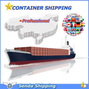 Dry Container Shipping Service to Global pictures & photos