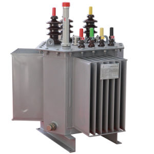 11kv 33kv Oil Immersed Electric Power High Voltage Transformer pictures & photos