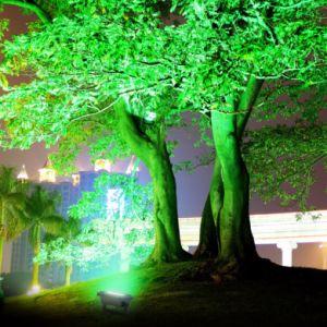 Unique Design RGB Color Change Solar Flood Light Landscape Light for Garden Decorate pictures & photos