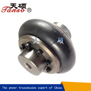 Complete Flexible Coupling with Rubber Tyre pictures & photos