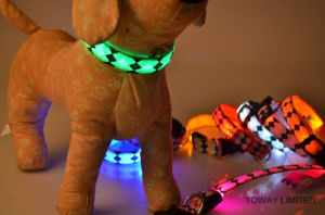 Grid Charging Power Battery Flashing Dog Lead Pet LED Collars pictures & photos