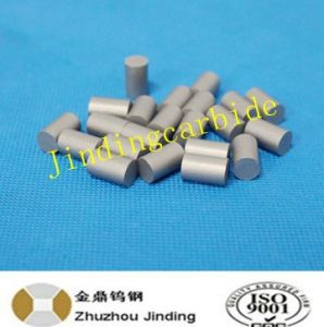 Cemented Carbide Cylinder Blank for Band Saw Application pictures & photos
