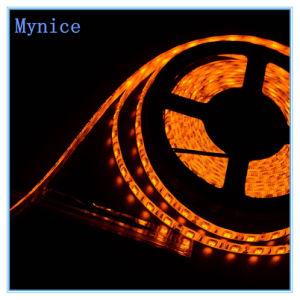High Brightness LED Strip 12V/24V SMD2835 Flexible LED Lighting Strip pictures & photos