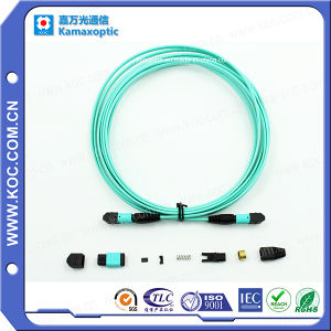 Optical Fiber Cable MPO pictures & photos