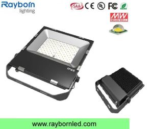 LED Light Source Aluminum Lamp Body Material LED Floodlight (RB-FLL-100WS) pictures & photos