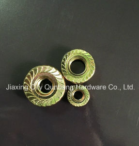 Hex Flange Nuts (DIN6923 M5-M30 Cl. 6/8) pictures & photos