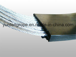 Conveyor Belt Use Galvanized Steel Wire Rope