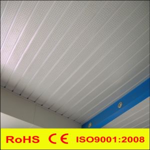 Metal Aluminum G Strip Linear False Suspended Decorative Ceiling pictures & photos