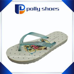 Latest Fancy Cheap Wholesaler Women′s PVC Flip Flop pictures & photos