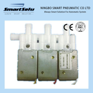 Smart High Quality Mini Solenoid Valve Wvl330c-12A pictures & photos