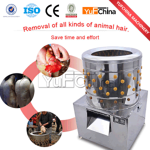 Commercial Chicken Plucker Machine pictures & photos