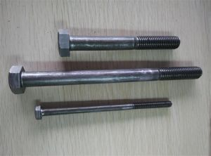 Half Thread Bsw Hex Bolt with Nut pictures & photos