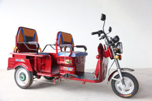 Three Wheel Electric Tricycle Scooter for 2 Person pictures & photos