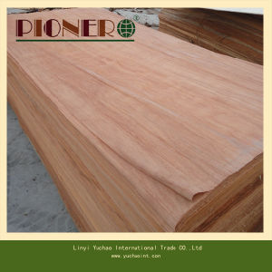 4′x8′x0.3mm A Grade Plb Natural Veneer for India pictures & photos