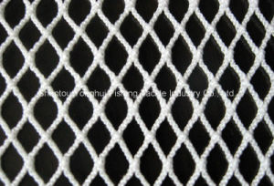 Nylon Knotless Net pictures & photos