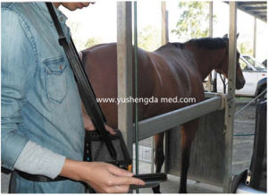 Portable Handheld Bladder Diagnostic Vet Use Ultrasound Scanner pictures & photos