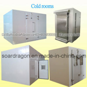 Chilled and Frozen Cold Room pictures & photos