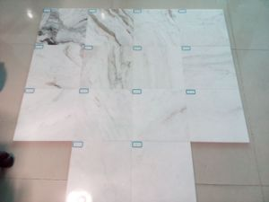 Castro White (Glorious White) Marble Tiles for Floor and Wall pictures & photos