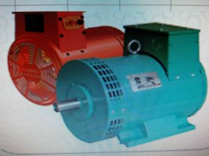Stw3kw~15kw Single Phase Brushless a. C. Sychronous Alternator pictures & photos