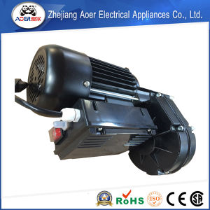 Exquisite Workmanship 2015 New Pattern Durable in Use 220V AC Single Phase Electric Motor pictures & photos