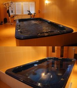 Monalisa Outdoor Whirlpool Jacuzzi Acrylic Hot Tub SPA (M-3307) pictures & photos